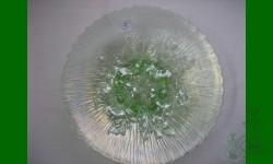 Tirage annuel 2007 - Poppy Show. Assiette. Vert glacier