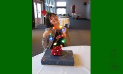 Joyeux Noël de la Fée des Étoiles